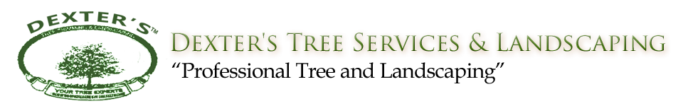 Dexter's Landscaping and Tree Service